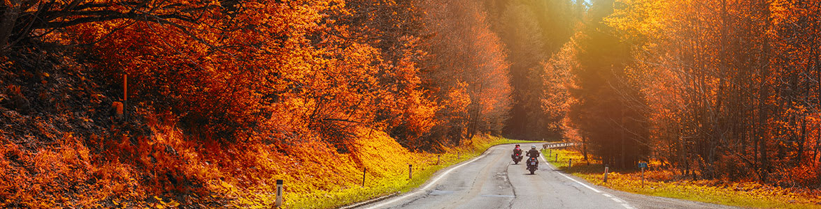 Five Aesome Things You Can Learn From Fall Motorcycle Rides, StreetRider Insurance, Ontario